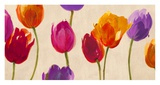 Tulips & Colors Prints by Luca Villa