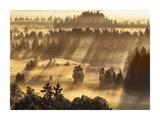 Fog impression at Sindelbachfilz, Bavaria, Germany Posters by Frank Krahmer