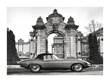 Vintage sports-car 1 Prints by  Gasoline Images