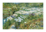 The Water Garden, 1909 Premium Giclee Print by Frederick Childe Hassam