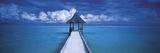 Die Malediven Giclée-Druck von Peter Adams