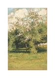 Blossoming Trees, 1882 Reproduction giclée Premium par Frederick Childe Hassam