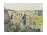 Hay Harvest, 1887 Reproduction giclée Premium par Camille Pissarro
