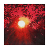 Sunburst, 2013 Giclee Print by Helen White