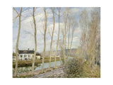 The Loing's Canal Giclee Print by Alfred Sisley