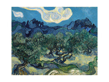 Olive Trees, 1889 Premium Giclee Print by Vincent van Gogh