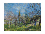 Orchard In Spring Giclee Print by Alfred Sisley