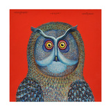 Long-Eared Owl, 2015 Giclee Print by Tamas Galambos