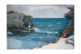 Rocky Shore, 1900 Giclee Print by Winslow Homer