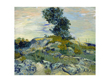 Rocks, 1888 Giclee Print by Vincent van Gogh
