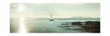 Evening Sail Crop Premium Giclee Print by Sue Schlabach