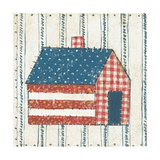Americana Quilt III Posters by David Carter Brown