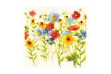Americana Meadow I Crop Prints by Shirley Novak