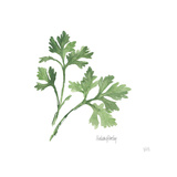 Italian Parsley V2 Posters by Chris Paschke