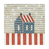 Americana Quilt V Prints by David Carter Brown