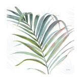 Tropical Blush V Art by Lisa Audit