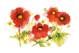 Flores Rojas VI Prints by Shirley Novak