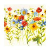 Americana Meadow I Prints by Shirley Novak