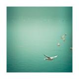 Soul Birds Prints by Keri Bevan
