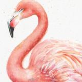 Gracefully Pink III Prints by Lisa Audit