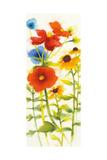 Americana Meadow III Premium Giclee Print by Shirley Novak
