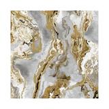 Onyx Silver Giclee Print by Danielle Carson