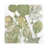 Naturaleza I Lámina giclée por Danielle Carson