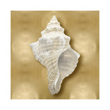 Ocean Gem on Gold I Giclee Print by Caroline Kelly