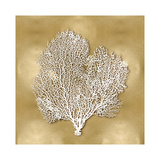 Sea Fan on Gold II Giclee Print by Caroline Kelly