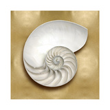 Ocean Gem on Gold II Giclee Print by Caroline Kelly