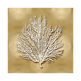 Sea Fan on Gold I Giclee Print by Caroline Kelly