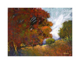 Aura Of Fall II Giclee Print by Michael Tienhaara