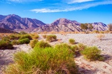 California Desert Lands Reproduction photographique par  duallogic