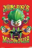 Lego Batman- Madhouse Poster