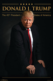 President of the United States - Donald Trump, 45th POTUS Prints