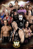 WWE- Epic Legends Posters