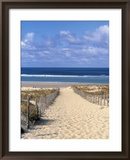 Cape Ferret, Basin d'Arcachon, Gironde, Aquitaine, France Framed Photographic Print by Doug Pearson