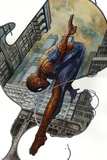 The Amazing Spider-Man 20 Variant Cover Art Posters by Simone Bianchi