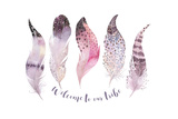 Hand Drawn Watercolor Paintings Vibrant Feather Set. Boho Style Wings. Illustration Isolated on Whi Print by  Kris_art
