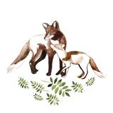 Fox's Joy Posters