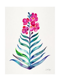 Fuchsia and Indigo Orchid Bloom Giclee Print by Cat Coquillette