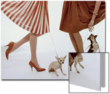 Vogue - February 1959 - Pumps and Pups Wall Art by William Bell