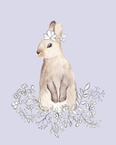 Blossom Bunny Prints