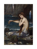 A Mermaid, 1900 Premium Giclee Print by John William Waterhouse