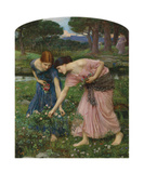 Gather Ye Rosebuds While Ye May, 1909 Premium Giclee Print by John William Waterhouse
