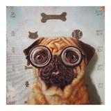Canine Eye Exam Prints by Lucia Heffernan