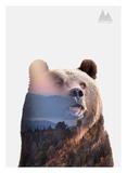 Bear Plakater af  Clean Nature