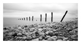 Beach Pebbles Print by  PhotoINC Studio