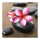 Zen Pebbles Posters by  PhotoINC Studio