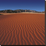 Namibian Desert Stretched Canvas Print by Chris Simpson